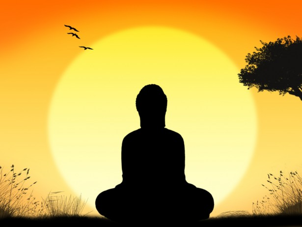 Meditation and Interrupting the pattern…